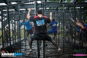 savage fence obstacle