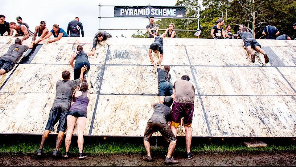 seed_pyramid-scheme-02.jpg