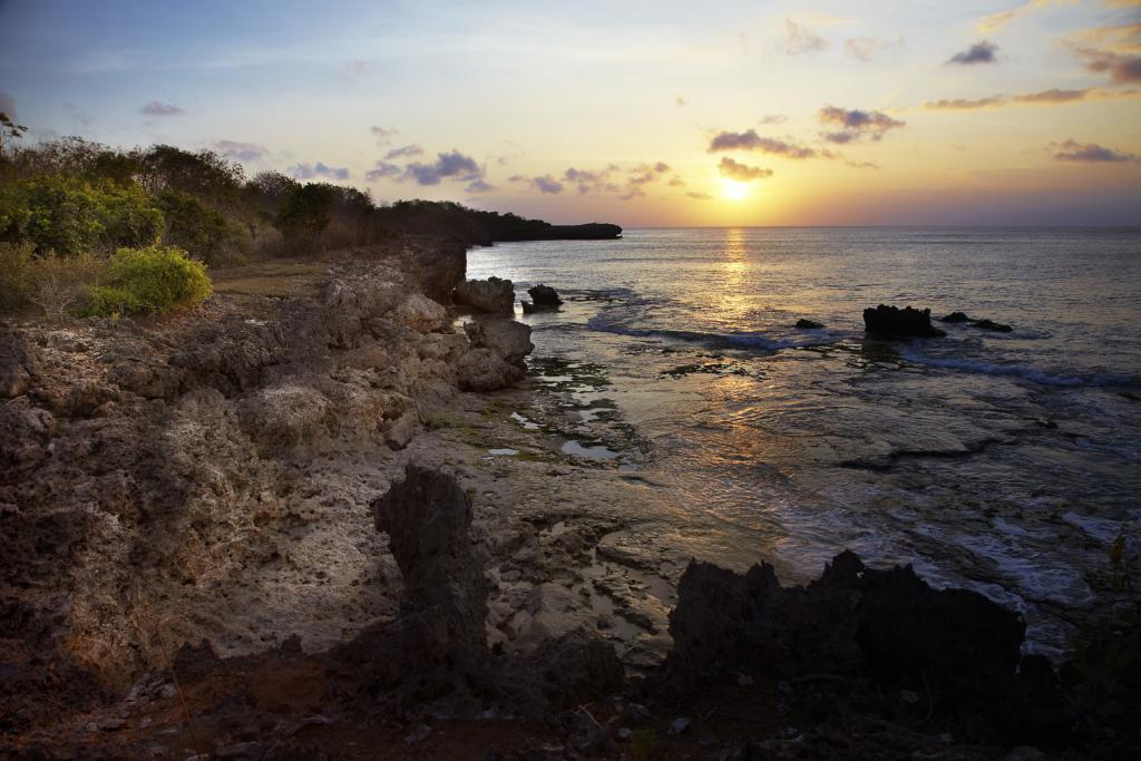 Jimbaran Hijau_Tough Mudder Bali 2016 (3)