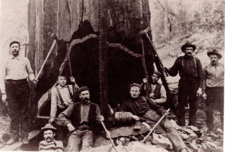 redwood20loggers-e1429047150207